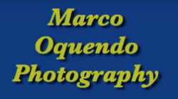 images by marco